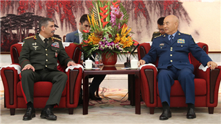 CMC vice chairman meets Azerbaijani defense minister