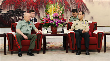 Chinese defense minister meets with chief of Russian Land Forces