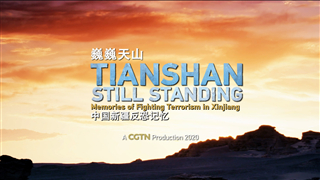 Documentary chronicles memories of Xinjiang's battle against terrorism